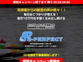 B-PERFECT1
